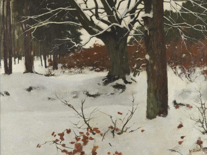Witsen_Bos_in_de_sneeuw
